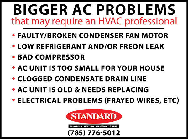 Graphic image showing the list of big AC problems that would require an HVAC technician, such as one from Standard Plumbing, Heating & Air Conditioning in Manhattan